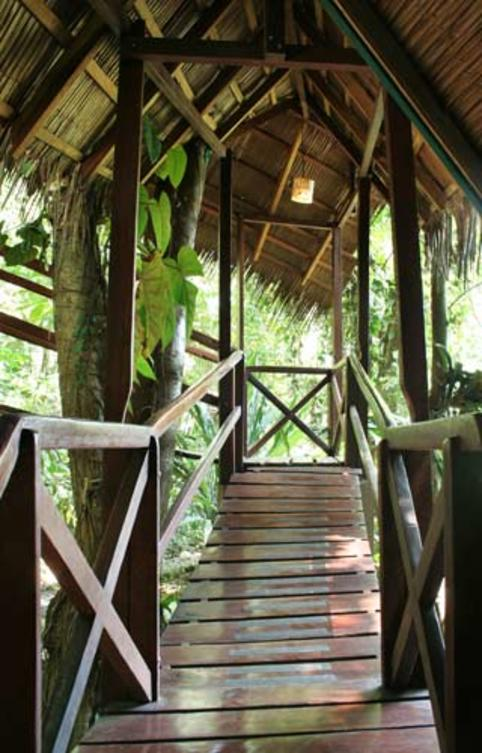 Costa-Rica-Tree-House-Hotel-Stairway